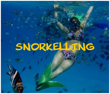 snorkelling.png