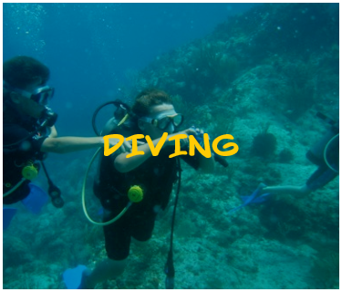 diving.png