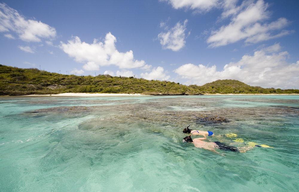 img_4806 snorkelling at green island.jpg