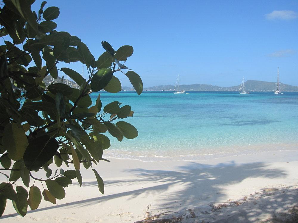 petit st. vincent beach(1).jpg