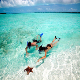 PICNIC BAY BEACH  (RUM CAY)   This family-friendly stretch of white sand has very clear shallow waters that are...  More