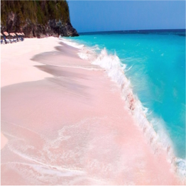 PINK SAND BEACH (HARBOUR ISLAND)   Regarded as one of The Bahamas' best beaches, this 3 mile-long stretch of pale...  More