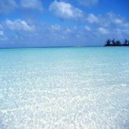 ANDROS   Nicholl's Town Beach, Kamalame Beach, Kemp's Bay, Love Hill Beach, Mars Bay...  More