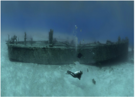 "MEDIUM-DEPTH WRECK DIVES   Featured in many Hollywood films, including James Bond, New Providence's south area counts several wrecks that were placed there as underwater film sets. Among those are the popular sites of the Vulcan Bomberfrom ""Thunderball"" and the vessel Tears of Allah from ""Never Say Never Again""."