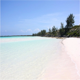 PLAYA PILAR   If Cayo Coco is too busy to your liking, head towards Cayo Guillermo, a smaller yet...  More