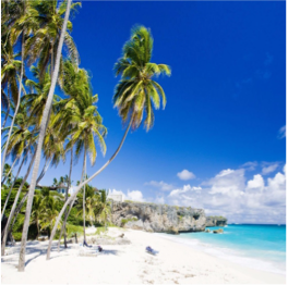 BOTTOM BAY BEACH   Imagine a wide bay with high, coral cliffs half surrounding you, and tall trees up...  More