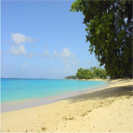 GIBBES BEACH   If the idea of peace and tranquillity is what brings you to Barbados, then you...  More