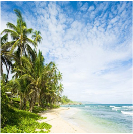 MARTIN'S BAY   An untouched and secluded spot located on the eastern coast of Barbados, with...  More