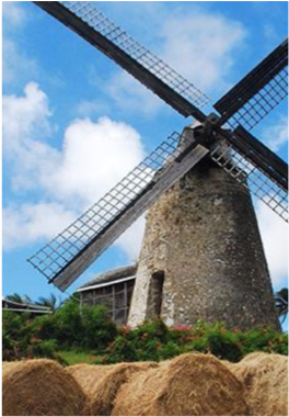 MORGAN LEWIS SUGAR MILL    The world's only working sugar windmill of its kind, and maintained by the Barbados National Trust, the site features an exhibit document the tools and techniques used at the time of wind-powered mills on the island.