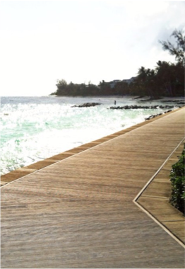 RICHARD HAYNES BOARDWALK    Stretching over 1.6km between Camelot and Accra Beach, the boardwalk offers a picturesque coast along Hastings Rocks, on the southern coast of the island. Bars, restaurants, and small coves can be enjoyed along the way.