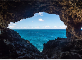 ANIMAL FLOWER CAVE    Located in the parish of St Lucy, at the country's most northerly point, the island's lone accessible sea cave is named after the sea anemones found in the cave's pools, and feature interesting rock formations as well as offering beautiful views of the sea