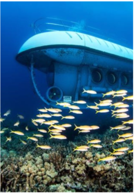 ATLANTIS SUBMARINE    If you would like to get closer to the local marine life but are not a keen snorkeler or diver, you may enjoy a tour on the Atlantis Submarine, in which you can explore the underwater world from the comfort of your seat. The tour takes visitors to depth of 150 feet, where amazing aquatic wildlife as well as a shipwreck are revealed.
