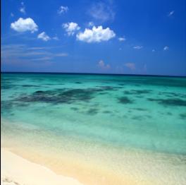 ARASHI BEACH      If you're driving yourself around the Island, Arashi Beach has a large...  More