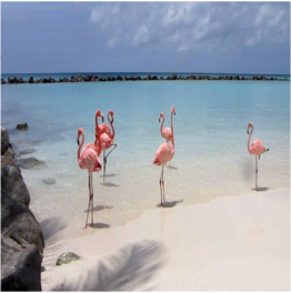 RENAISSANCE ISLAND      Aruba's many beaches are all open to the public, with the exception of private...  More