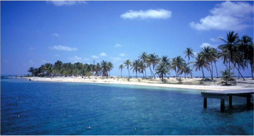 HALF MOON CAYE    The classic and magnificent Caribbean view you imagined when you picture your Belize holiday comes to fruition here; cler, blue Caribbean...  More