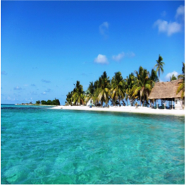 LAUGHINGBIRD CAYE AND SILK CAYES    A popular dayhop from Placencia due to its ease,Laughingbird Caye and Silk...  More
