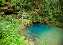 ST HERMAN'S BLUE HOLE NATIONAL PARK    The park features a natural turquoise pool that is part of a river system and that offers a nice cooling dip in the middle of lush vegetation. For the adventurous, the park is also home to a cave that requires a guide to be explored.