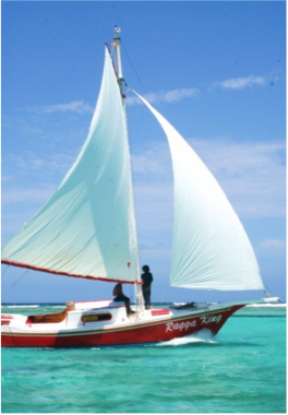 SAILING & BOATING    Although hidden coral heads may make navigation somewhat challenging, sailing around the Belizean atolls promises to be an unforgettable and exciting experience. But if you fancy exploring the idyllic tropical cayes without the worry of sailing your own boat, simply charter a boat and let the local pros do the work. You're on holiday, after all!