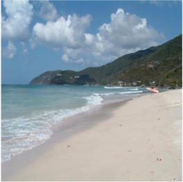 APPLE BAY (TORTOLA)   This is a surfers' haven with its choppier waters. The changes in the ocean and...  More