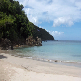 BREWER'S BAY BEACH   (TORTOLA)   If you're a dedicated snorkeler then this is the place to come; you will need to...  More