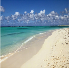 FLASH OF BEAUTY BEACH     (ANEGADA)   A picturesque spot made of coral sand and crystal-clear waters that is perfect for...  More