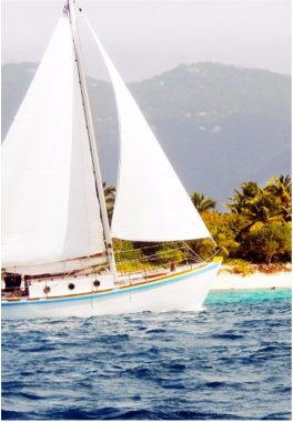 JOST VAN DYKE PRESERVATION SOCIETY      With the goal of preserving the local maritime heritage, the JVD Preservation Society took the ambitious project to recreate a fully functioning replica of a traditional Tortola sloop, the Endeavour.