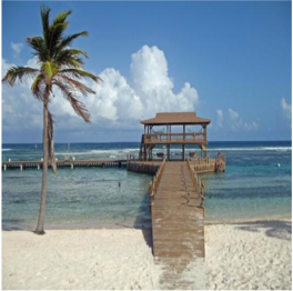 BRAC REEF BEACH RESORT     Brac Reef Beach Resort is the islands only luxury resort, and from here the beach...  More