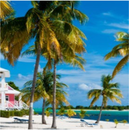 SOUTHERN CROSS CLUB     If, like many visitors to the Cayman Islands you're jam-packing your trip with...  More