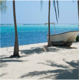 HEAD O BAY     Head O Bay beach is located on Little Cayman, on the South Shore along...  More