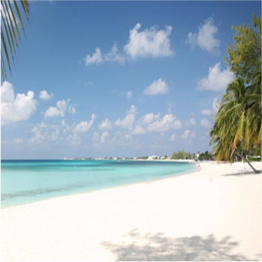 GOVERNOR'S BEACH     A serene and beautiful spot within Seven Mile Beach,Governor's Beach is a...  More