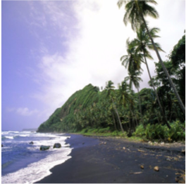 BLACK SAND  BEACH   Black Sands beach is exactly how you would expect, this famous beach has the...  More