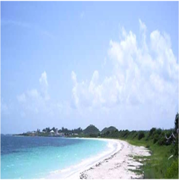 JABBERWOCK BEACH   This mile-long strip of soft white sand located on the north-eastern coast is...  More