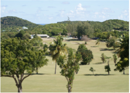 CEDAR VALLEY GOLF CLUB      Set in the middle of a beautiful tropical vegetation and boasting breathtaking views of the island, Antigua's only 18 hole championship golf course welcomes all skill levels for a mesmerizing yet challenging game that even non-golfers won't regret! Located 3 miles from St John's, on the northern end of the island.