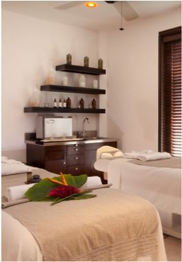 SUGAR RIDGE ANTIGUA SPA      A choice of Ayurvedic focused rituals in the Eastern Caribbean's only AVEDA concept spa. Five treatment rooms, including one for couple treatments.