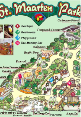 ST MAARTEN PARK    Take a leisurely stroll around the park and learn about the species of plants and animals that were already present on St Maarten when the Arawak Indians first landed on the island.