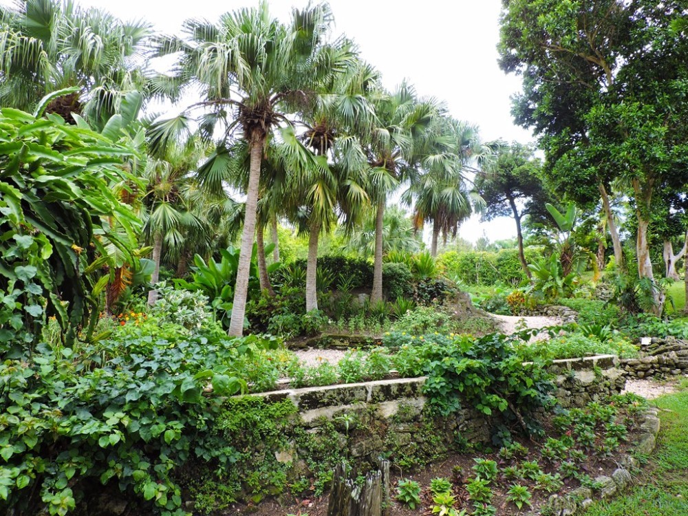BERMUDA ARBORETUM      This 22-acre large park is the perfect spot for those who wish to combine nature and exercise. A stunning variety of fauna and flora, set in beautiful forests and meadows featuring walking trails along which you will find a total of 20 fitness stations.