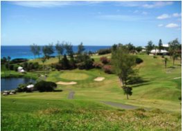 OCEAN VIEW GOLF COURSE   Overlooking the ocean and featuring a public 9-hole course as well as a driving range. Perfect for a quick practice or game. Located on Barkers Hill, Devonshire.