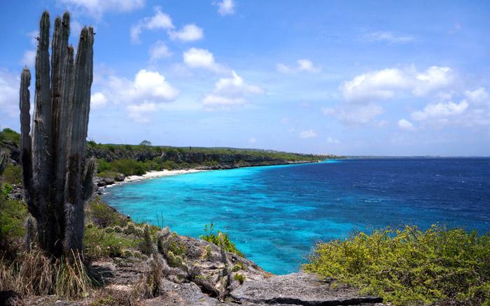 Bonaire-coast.jpg