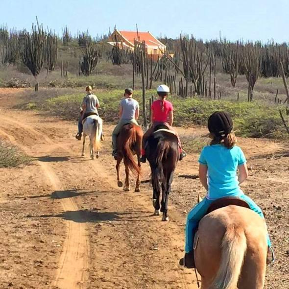 Horseback-Riding-Bonaire.jpg