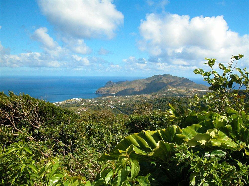 Montserrat-Green-Warm.jpg