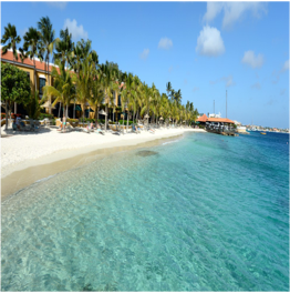 HARBOUR VILLAGE BEACH   Although this paradisiac palm-tree lined white sandy beach is a private spot...  More