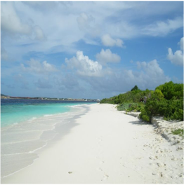 NO NAME BEACH   Located on the uninhabited Klein Bonaire, this beach is a castaway fantasy...  More
