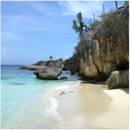 WAYAKA   This set of three beaches, commonly referred to as Wakaya I, II, and III, are located...  More