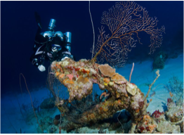 RED SLAVE   Experienced divers will enjoy the colonies of horse-eye jacks and turtles, as well as schooling baitfish and big-eyed scad chased by larger predators. The site is located off the second set of slave huts and has a depth ranging from 20 to 80 feet (6 to 25 metres).