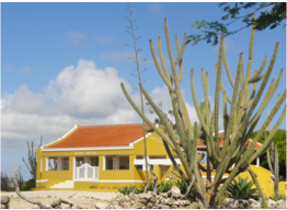 ROOI LAMOENCHI KUNUKU PARK   Located North of Lac Bay, this traditional kunuku house restored by its owner aims to educate locals and tourists about the island's heritage by immortalising authentic kunuku living at the heart of an unspoiled terrain.