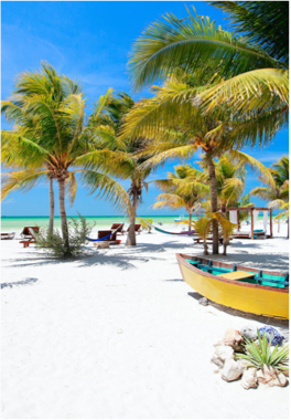 ISLA HOLBOX   Another haven amongst the bustle is Isla Holbox, an island located a three hours' trip north of Cancun and that is part of the protected area of Yum-Balam. The lagoon that separates the Holbox from the mainland is a sanctuary for tropical birds such as flamingos and pelicans.
