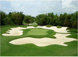THE GOLF CLUB AT PLAYACAR   Regarded by many as one of the area's most challenging games, the course winds through a succession of lakes and thick flora, and is famous for having been designed by Robert Von Hagge.