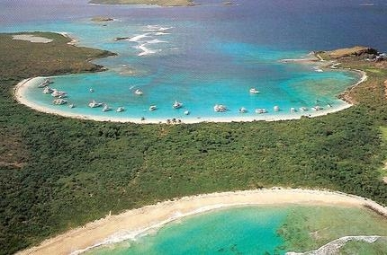 playa-tortuga-puerto-rico.jpg