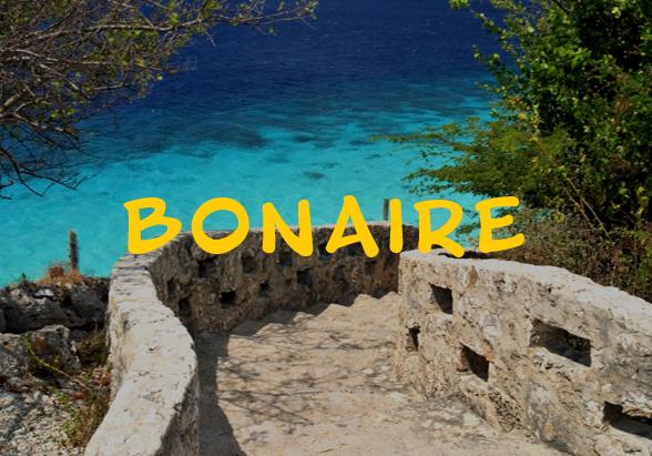 bonaire2.png
