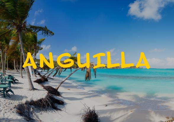 anguilla2.png
